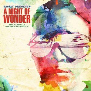 A Night Of Wonder Stevie Wonder Tribute